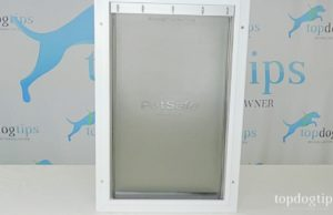 PetSafe Extreme Weather Pet Door