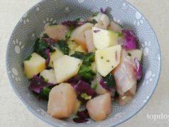 easy raw dog food diet