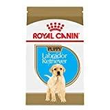Royal Canin Labrador Retriever Breed Health Nutrition Puppy