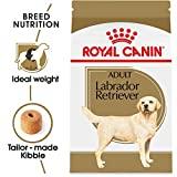 Royal Canin Labrador Retriever Breed Health Nutrition Adult