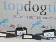 Coastal Hound Dog Leash Giveaway