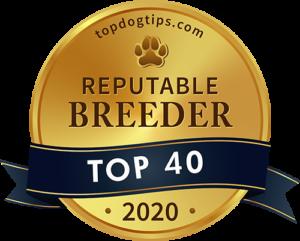 Reputable Dog Breeder 2020