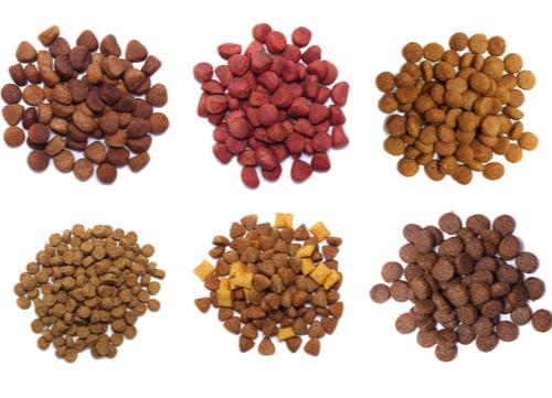 manufactured dog foods