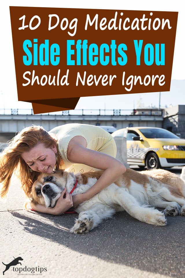 Dog Medications Side Effects You Should Never Ignore