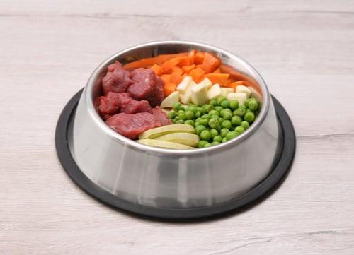 raw homemade dog food