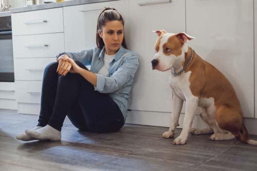 stressed dog owner