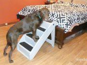 PetSafe CozyUp Pet Stairs