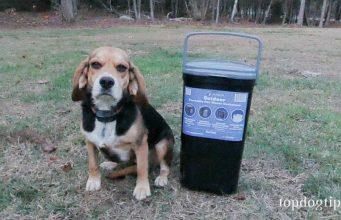 PetFusion Pet Waste Disposal