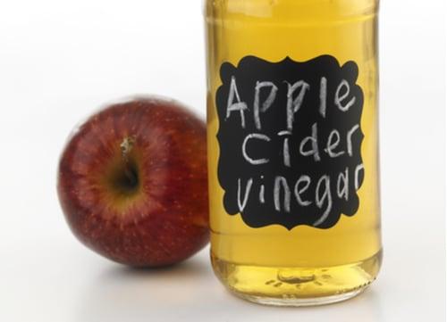 dog tick remedies apple cider vinegar