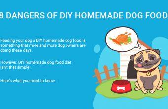 Dangers of DIY Homemade Dog Food
