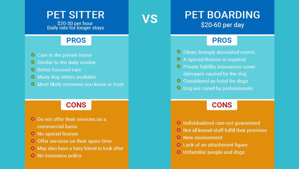 Pet Sitter or Pet Boarding