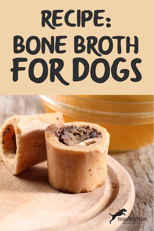Recipe- Bone Broth for Dogs