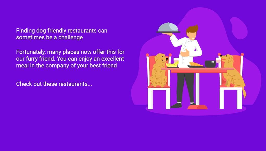 11 Unique Dog Friendly Restaurants (US)