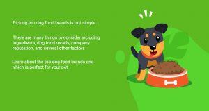 15 Top Dog Food Brands (2021)