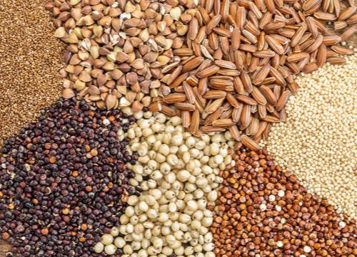 Grain-free food