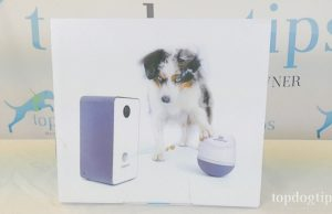 PupPod Review